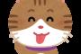 猫エサに6000円!猫は自分の仕事を自覚できる生き物。